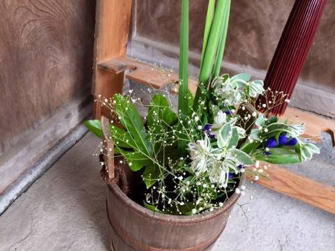 淡河宿本陣跡にて、花展を開いています!
